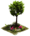 28 ColonialAge Ornamental Tree.png